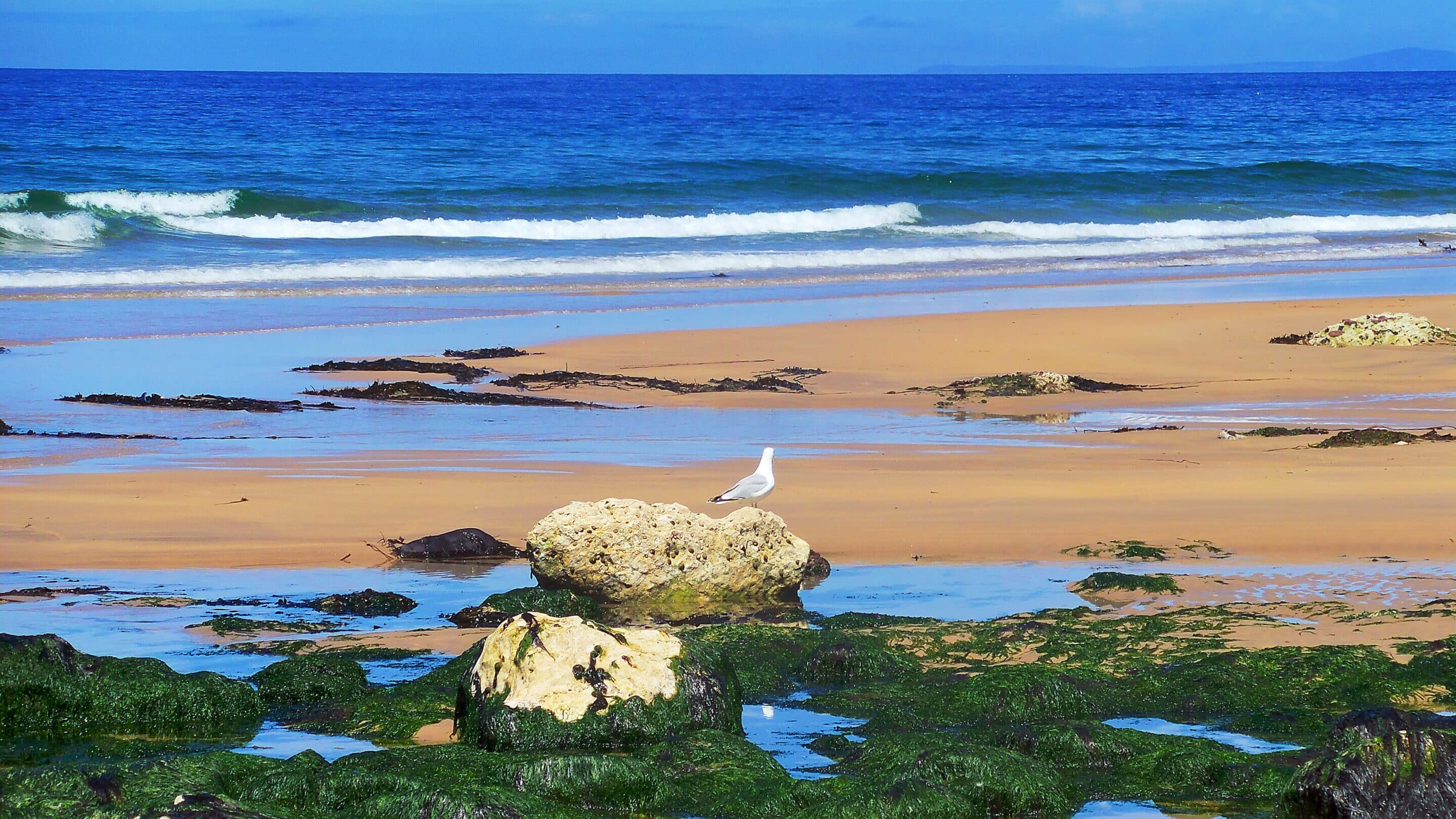 In Search of the Perfect Beach .... Ireland by Betsi's World