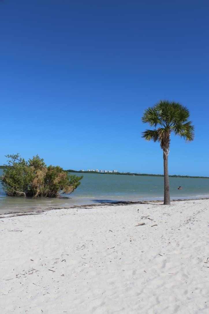Discover Florida's Space Coast & Treasure Coast : Fort Pierce Beaches