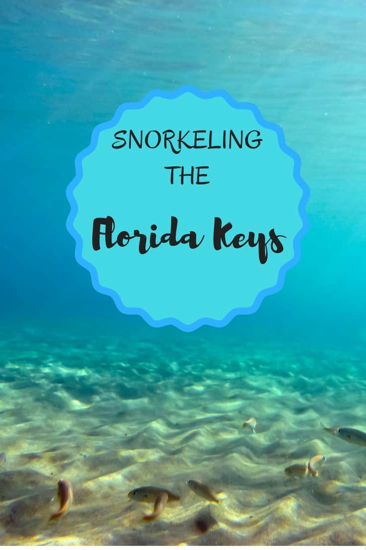 Out of my Comfort Zone:  Snorkeling Dry Rocks in the Florida Keys