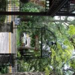 Walking in the front gate of the St. Francis Inn, you are ready for your St.Augustine romantic getaway