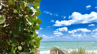 10 Things to Love About Vero Beach, Florida