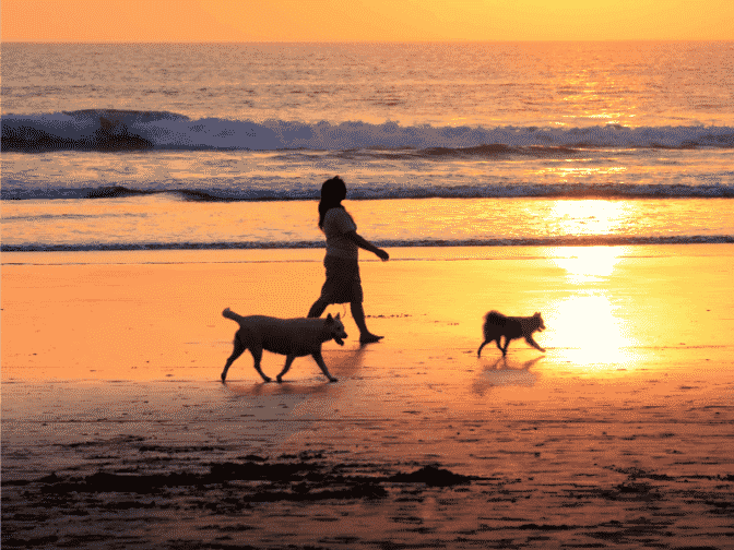 Flagler Beach on Florida's East coast offers fun, sun, relaxation and more
