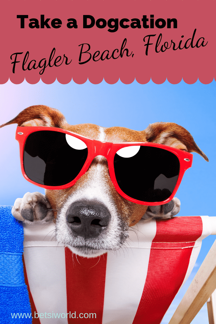 Getaway to Flagler Beach, dog wearing sunglasses and sitting in a red and white striped beach chair