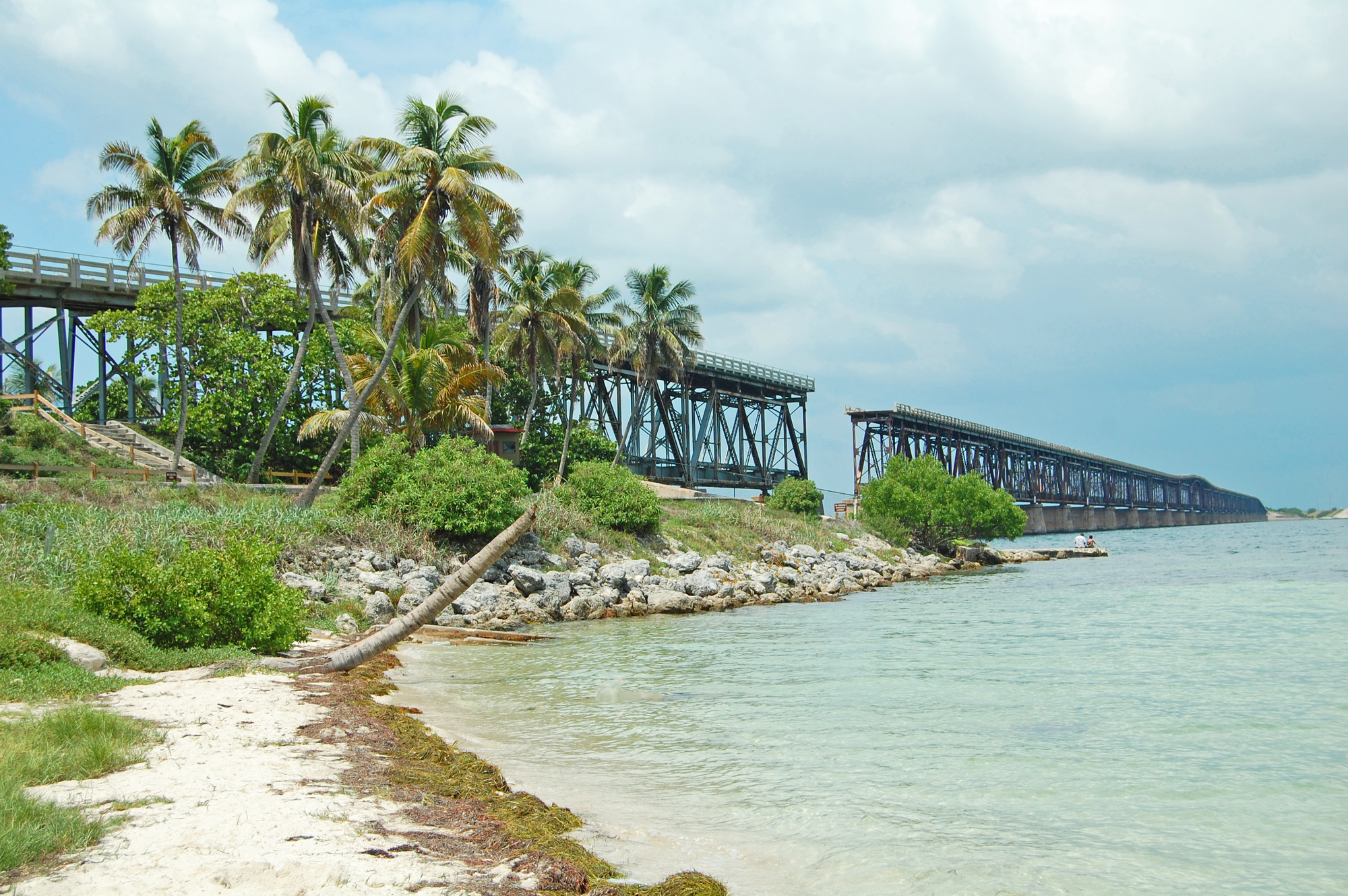 broken bridge surrounded by scrub palm trees and bordered by sand and ocean