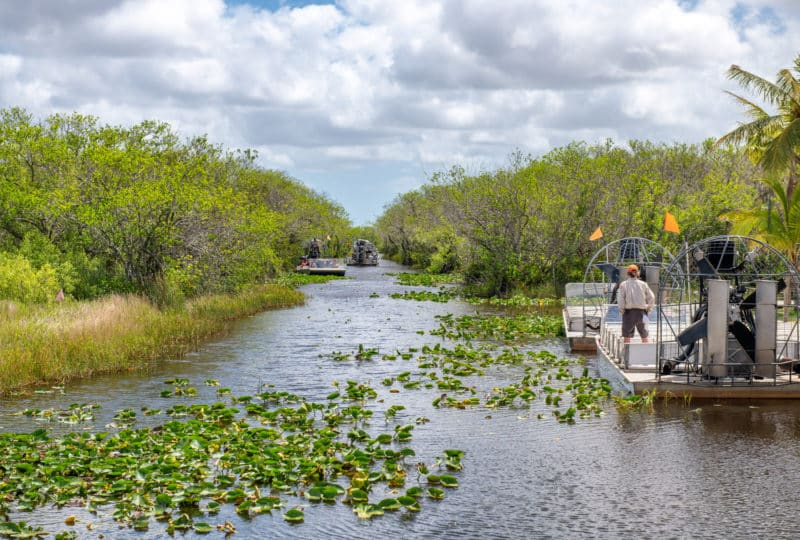 The Everglades with airboats filled with water lilies