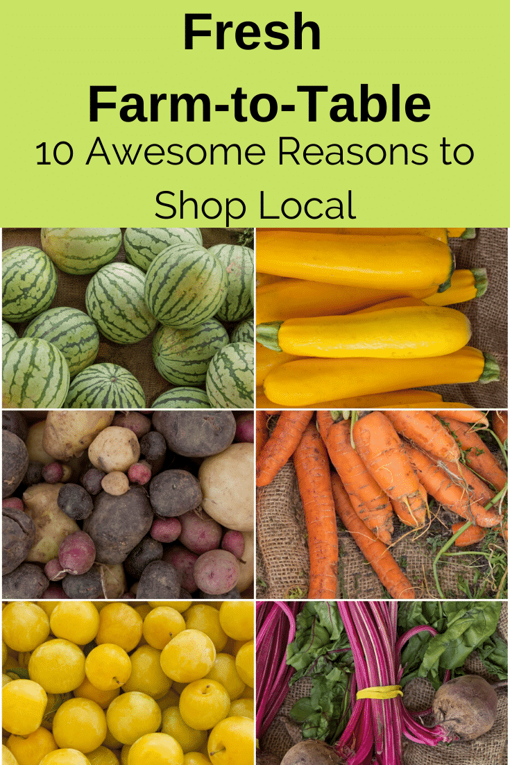 Here are 10 amazing reasons to visit your local farmer's market this season. In addition to providing you with healthy options direct from the source, your local farmer's market has so many other wonderful things to offer your family.