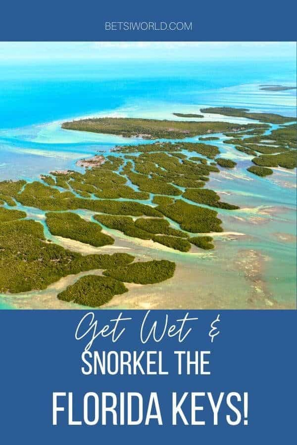 Snorkeling in the Florida Keys is an amazing experience! With tons of reefs and shipwrecks teeming with sealife it will be an adventure you'll never forget!