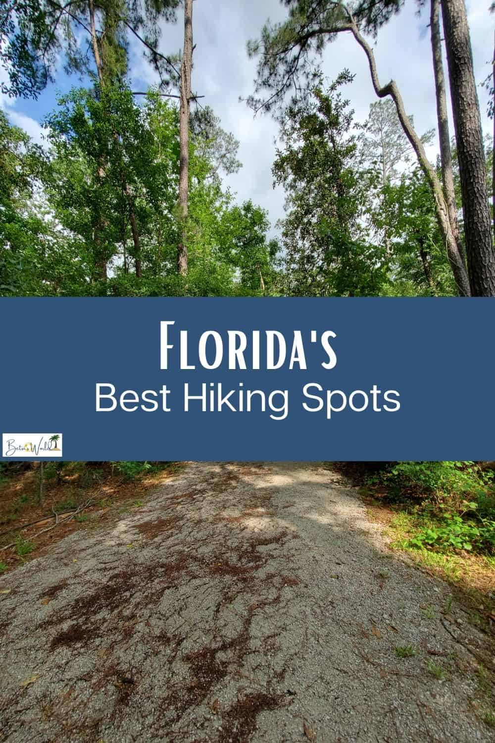 Wondering where to find good hiking trails in Florida? We've got you covered! For the best hiking in Florida experience, we've rounded up our top 5 favorite parks from around the state. #hiking #florida #floridatravel
