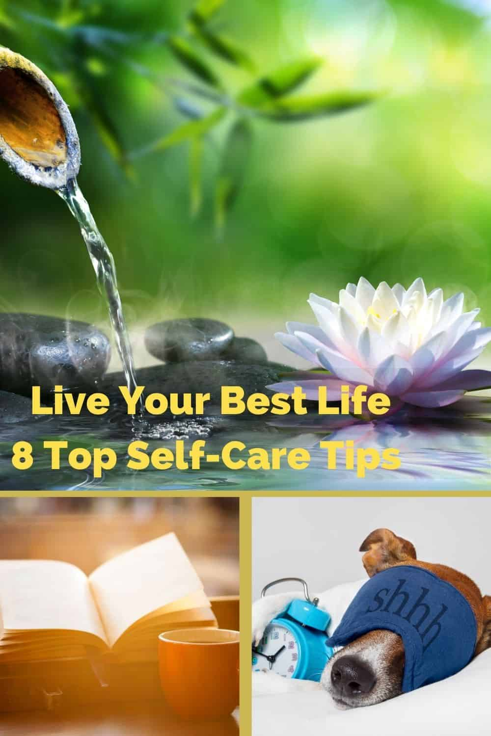 It may seem impossible to look and feel your best every day, but it is not out of your reach. You may even be so used to not functioning at 100% that you may not even notice how much your life could be improved. These #selfcare tips will help you live your best life. #covid #takecareofme #selfcaretips