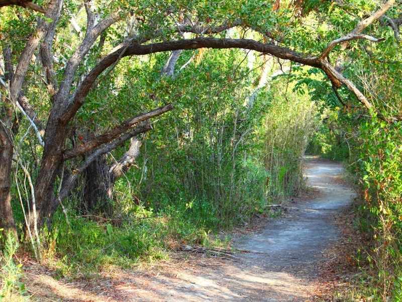 The Best Places For Hiking in Florida