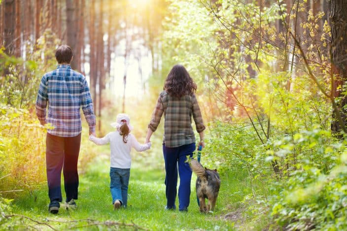 family and dog walking in the forest as a free activity