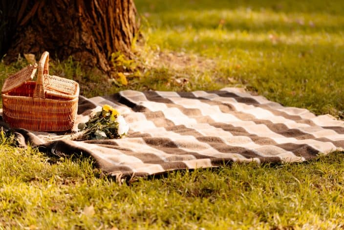 picnic blanket and basket in the park which is a great free thing to do with kids