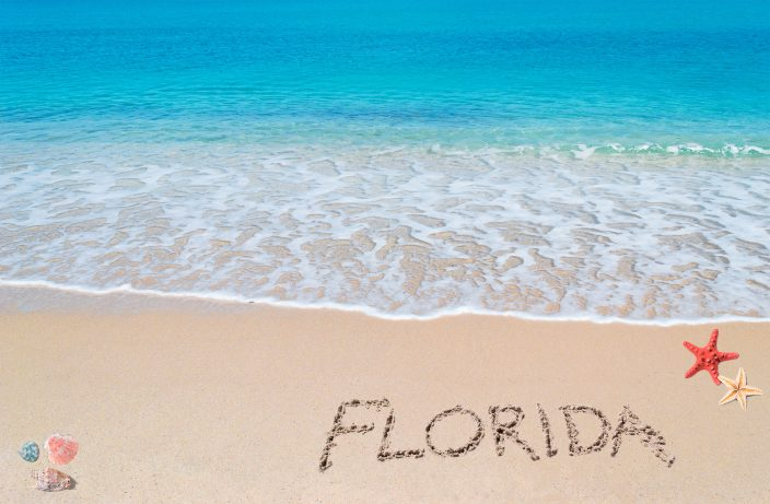 A photo to represent Florida Travel, turquoise water and golden sand with shells and sea stars and