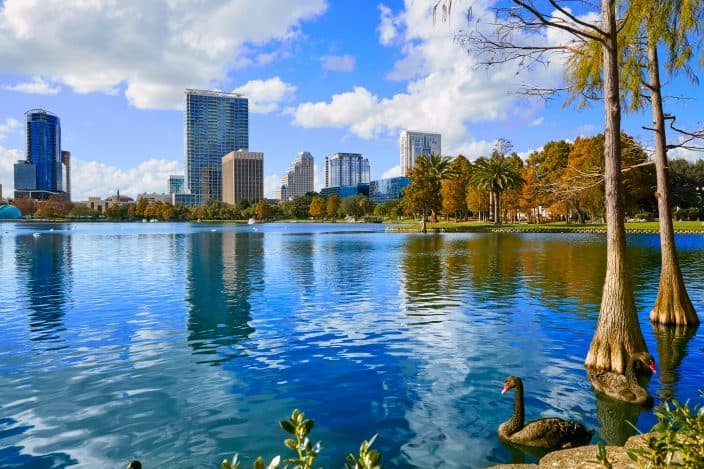 Lake Eola in Orland Florida with blue skies and a duck floating in the lake. A great place to visit during your romantic getaway in central florida