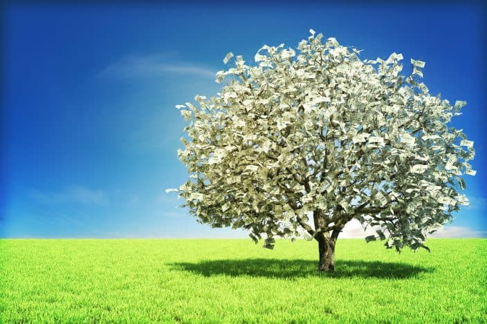 money tree with blue skies and grass