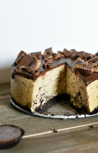 Peanut butter cheesecake with a slice taken out, topped with chocolate ganache and Reese's pieces.