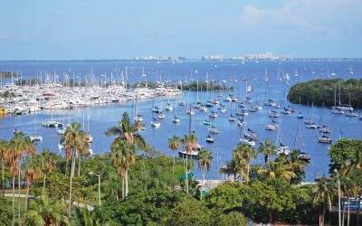 6 Cool Family Friendly Day Trips from Fort Lauderdale