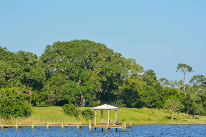 a dock with a pergola in water in Ocean Springs, with green grass and a green landscape on the shore with lots of trees