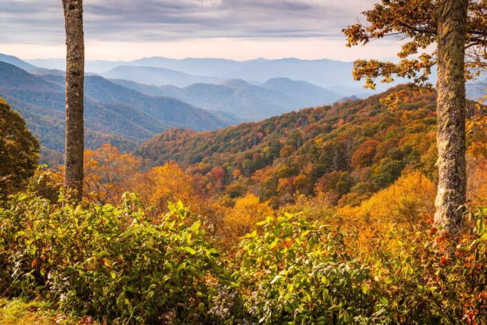 Picture of the Smoky Mountains National park overlooking hills and green trees.