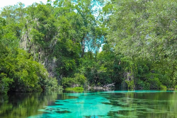 Weeki Wachee Springs River with blues and greens, a day trip from Orlando