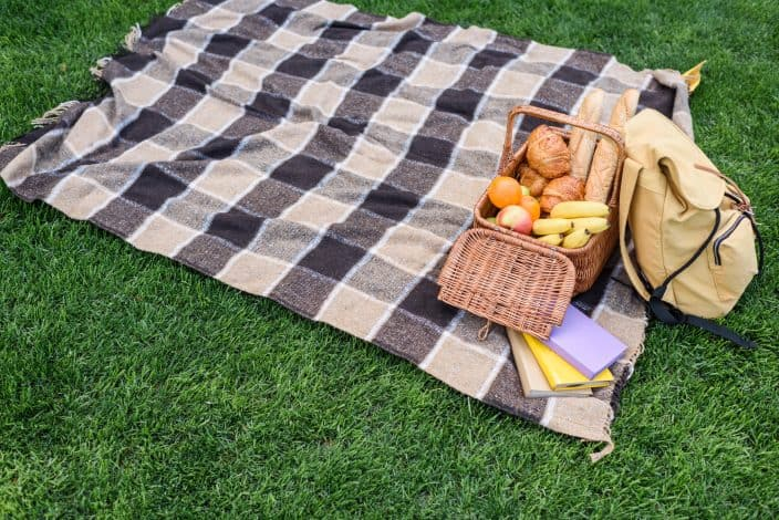 Picture of picnic basket open with fruits and bread inside with backpack placed on a black and white checkered picnic sheet on the green grass.