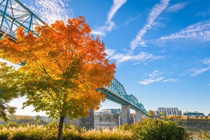 Chattanooga, Tennessee, a fall bucket list destination, during fall season at Walnut Street Bridge with a tree with green, orange, and red leaves, green bushes and grass in the foreground, a dark river in the midground, and tall buildings in the background with blue skies.