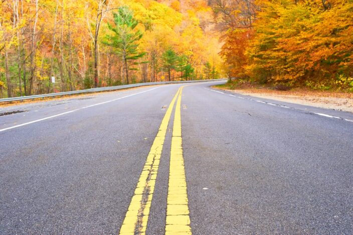 Autumn scene with road in forest with trees with orange, yellow, red, and green foliage, to represent taking a road trip in fall