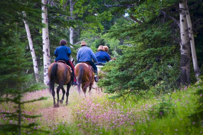 4 people in blue horseback riding brown horses in Kentucky in the forest with green trees, grass, and purple wildflowers, an example of an adventure vacation