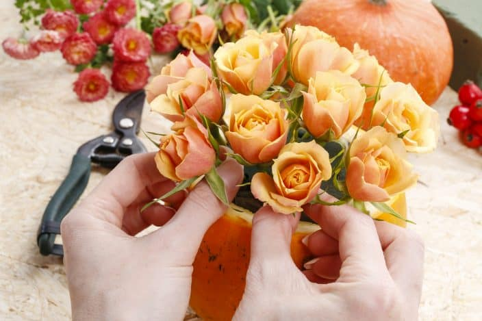 a woman's hands making a center piece with a pumpkin and orange spray roses with red berries, flower shears and pink flowers in the background on a counter top, an example of things to do in fall
